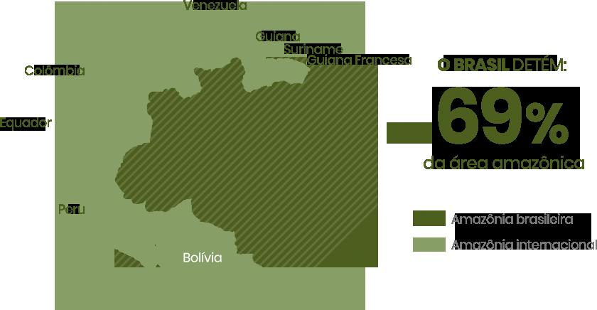 infografico-amazonia-brasileira.png