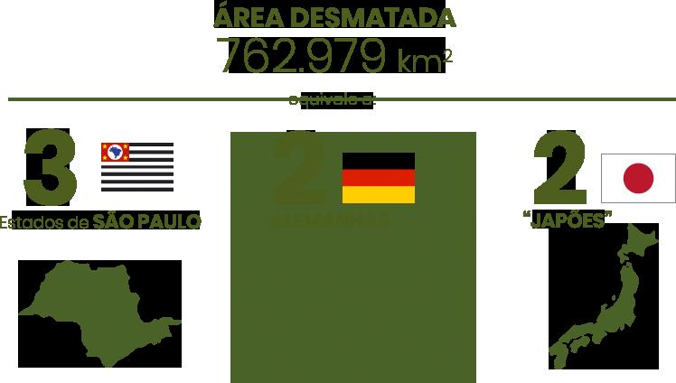 infografico-area-desmatada.png